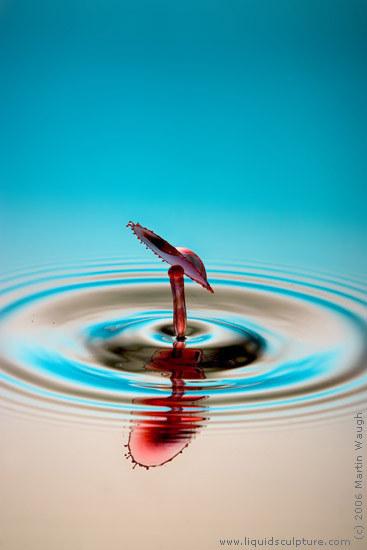 قارن بين مصور سعودي ومصور water-drop-116805.jpg