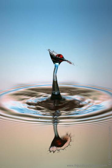 water drop. Water Drop Photograph